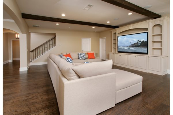 5living room w-tv photo